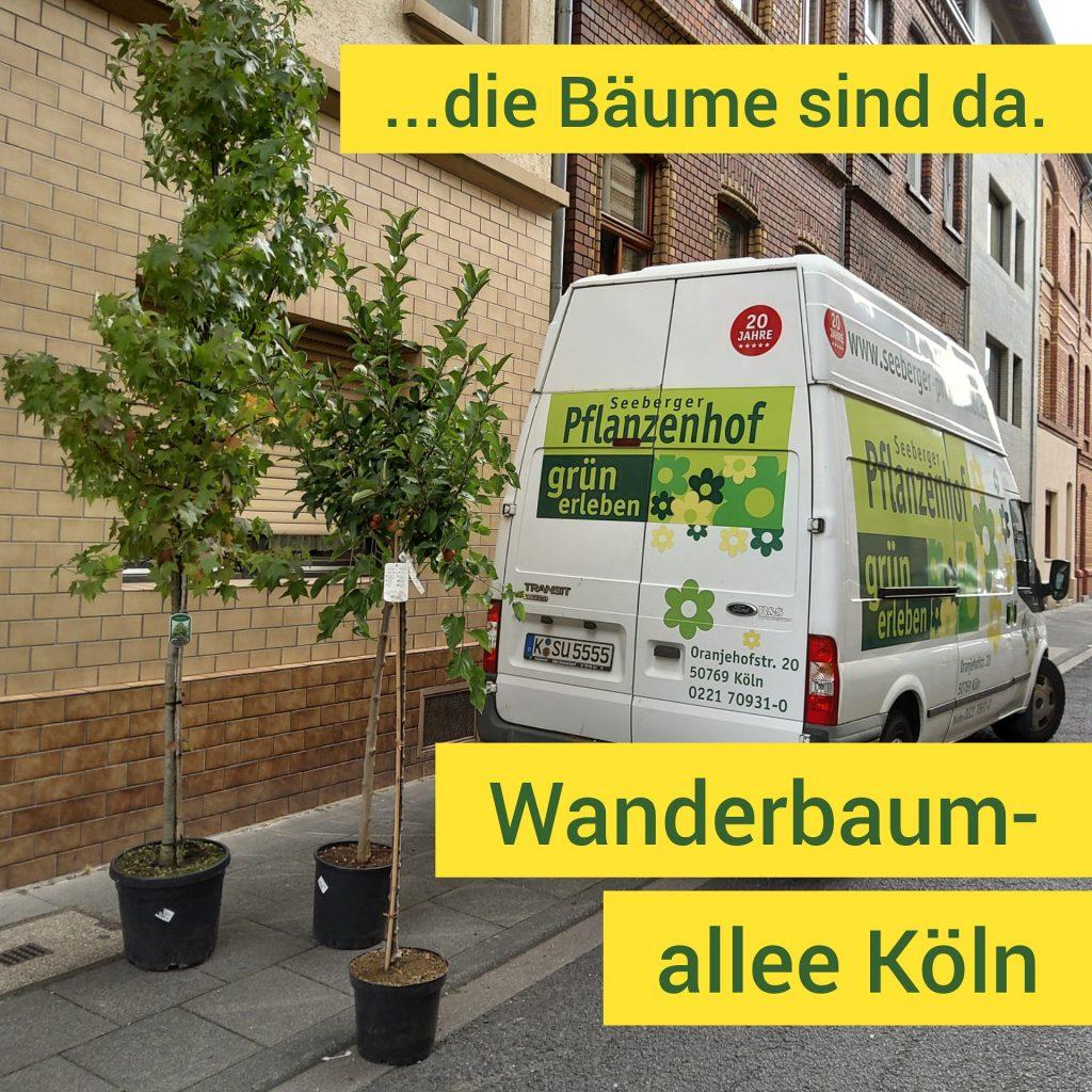 Ein Lieferwagen eines Gärtnereibetrieb, hinter dem drei Bäume stehen.