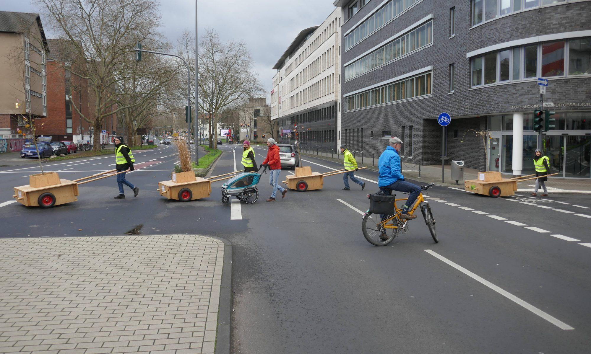 Wanderbaumallee Köln