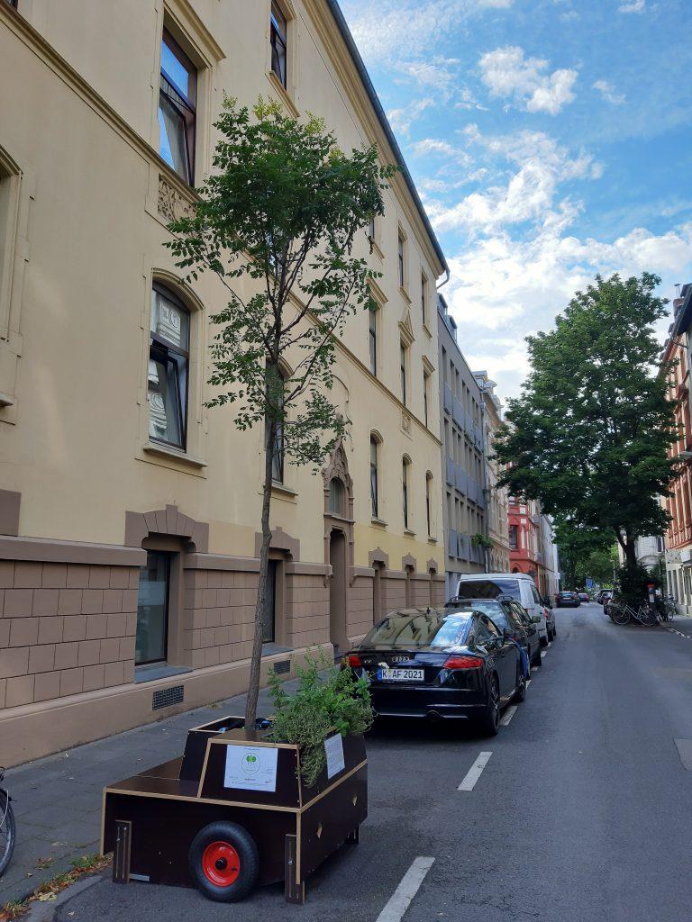 Ein Modul der Wanderbaumallee am Straßenrand in einer Parkbucht.