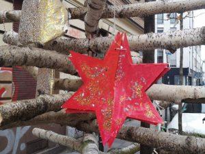 Stern im Wanderbaum